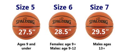 basketball sizes