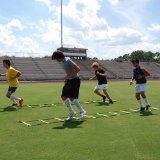 speed agility training ladder